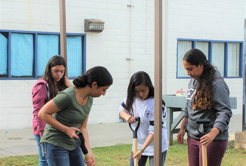 Bassett high ecology club wins regional environmental - Garden city union free school district ...