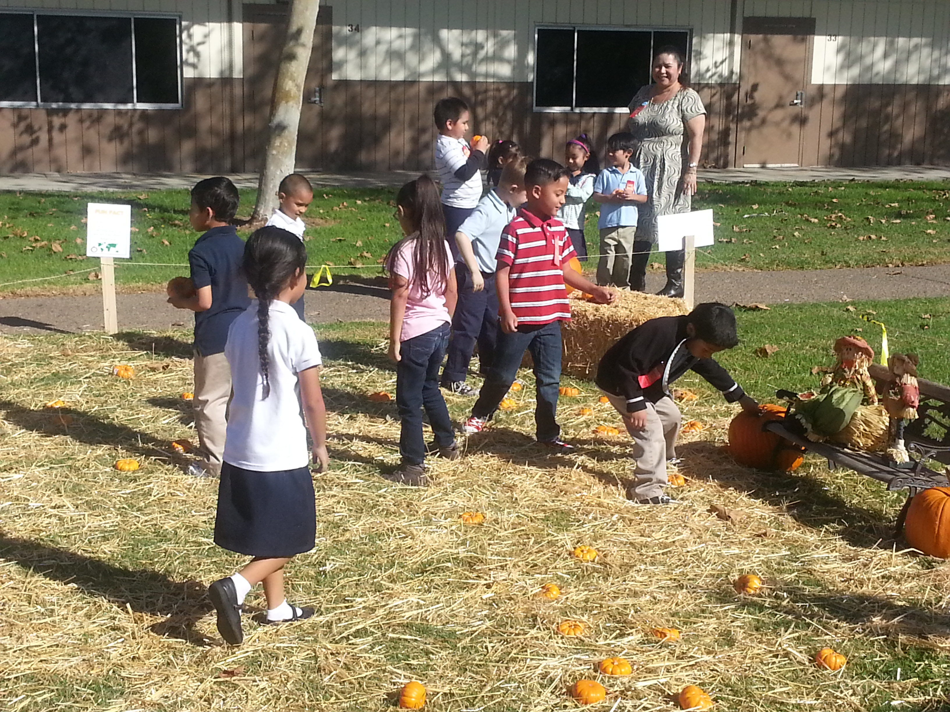 School Pumpkin Patches Bring Nutrition and Classroom
